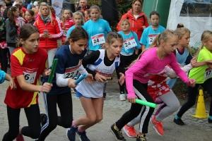 Mistrzostwa Powiatu Sztafety-przełaj 2019_15