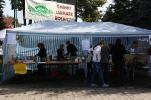 Festyn szkolny i Jarmark rolniczy 2016_15