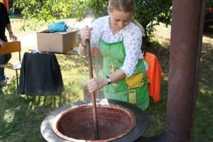 Festyn szkolny i Jarmark rolniczy 2016_25