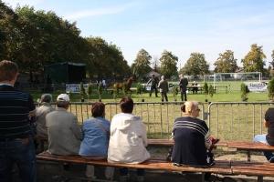 Festyn szkolny i Jarmark rolniczy 2016_26