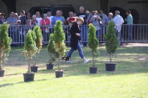 Festyn szkolny i Jarmark rolniczy 2016_32
