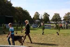 Festyn szkolny i Jarmark rolniczy 2016_36