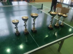 Mistrzostwa Gminy Włoszakowice w tenisie stołowym 2018_27